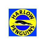 harlowpenguins.com